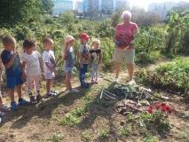Wycieczka do ogródków działkowych